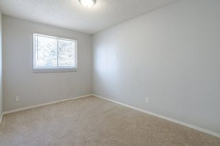 Photo 15: 3452 39 Street in Edmonton: Zone 29 House for sale : MLS®# E4231480