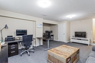 Photo 22: 25 BRIGHTONCREST Rise SE in Calgary: New Brighton Detached for sale : MLS®# A1110140