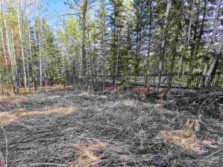 """Photo 5: 12925 CHERRY Road: Charlie Lake Land for sale in """"CHARLIE LAKE"""" (Fort St. John (Zone 60))  : MLS®# R2519694"""
