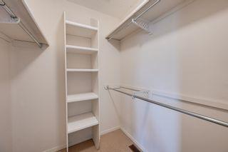 Photo 29: 227 FERGUSON Place in Edmonton: Zone 14 House for sale : MLS®# E4256988