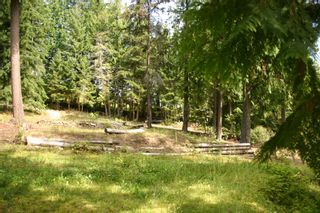 Photo 35: 11 6432 Sunnybrae Road in Tappen: Steamboat Shores Vacant Land for sale (Shuswap Lake)  : MLS®# 10155187