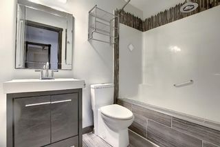 Photo 19: 312 Mt Aberdeen Close SE in Calgary: McKenzie Lake Detached for sale : MLS®# A1046407