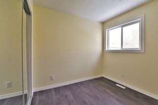 Photo 23: 3028 33A Avenue SE in Calgary: Dover Detached for sale : MLS®# A1069811