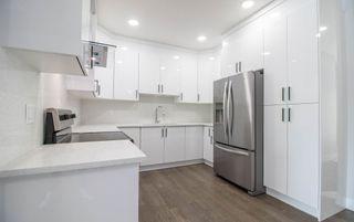 Photo 10: 6427 176 Avenue NW in Edmonton: Zone 03 House for sale : MLS®# E4224782