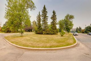 Photo 34: 2224 38 Street SW in Calgary: Glendale Detached for sale : MLS®# A1136875