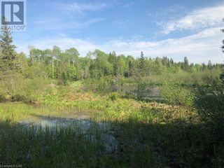 Photo 18: N/A RANEY Road E in Sundridge: Vacant Land for sale : MLS®# 40129602
