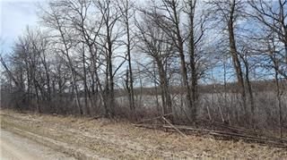 Main Photo: 0 Ferry Road in East Selkirk: Residential for sale (R02)  : MLS®# 202004254