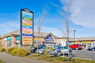 Photo 37: 201 Saddlecrest Close NE in Calgary: Saddle Ridge Detached for sale : MLS®# A1096069