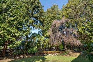 Photo 27: 1311 W 57TH Avenue in Vancouver: South Granville House for sale (Vancouver West)  : MLS®# R2559878