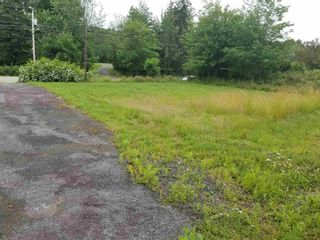 Photo 4: 6227 Highway 4 in Linacy: 108-Rural Pictou County Vacant Land for sale (Northern Region)  : MLS®# 202117205