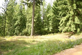 Photo 19: 11 6432 Sunnybrae Road in Tappen: Steamboat Shores Vacant Land for sale (Shuswap Lake)  : MLS®# 10155187