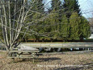 Photo 10:  in Ramara: Rural Ramara Property for sale : MLS®# X3371409