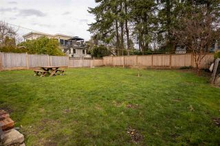 Photo 19: 1072 HABGOOD Street in Surrey: White Rock House for sale (South Surrey White Rock)  : MLS®# R2548430