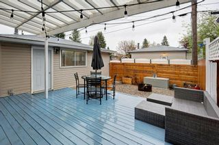 Photo 29: 527 MURPHY Place NE in Calgary: Mayland Heights Detached for sale : MLS®# C4297429