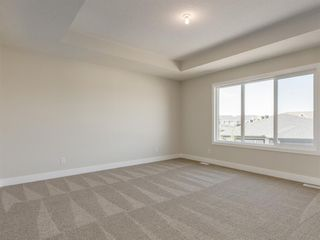 Photo 31: 159 CANOE Crescent SW: Airdrie Detached for sale : MLS®# A1019943