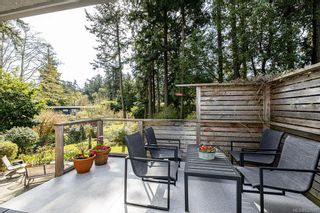 Photo 31: 2404 Alpine Cres in Saanich: SE Arbutus House for sale (Saanich East)  : MLS®# 837683