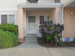 "Photo 1: 19 5915 VEDDER Road in Sardis: Vedder S Watson-Promontory Townhouse for sale in ""Melrose Place"" : MLS®# R2195975"