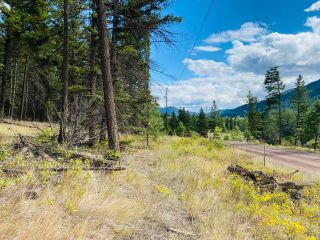 Photo 4: 9621 TRANQUILLE CRISS CRK ROAD in Kamloops: Red Lake Lots/Acreage for sale : MLS®# 164124