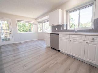 Photo 11: 11354 173 Avenue in Edmonton: Zone 27 House for sale : MLS®# E4253053