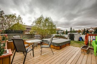 Photo 49: 234 Canoe Square SW: Airdrie Detached for sale : MLS®# A1043547