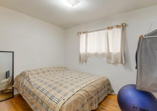 Photo 14: 56 Foley Road SE in Calgary: Fairview Detached for sale : MLS®# A1122921