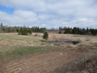 Photo 28: 32 Sutherlands Lane in Scotsburn: 108-Rural Pictou County Farm for sale (Northern Region)  : MLS®# 202108950
