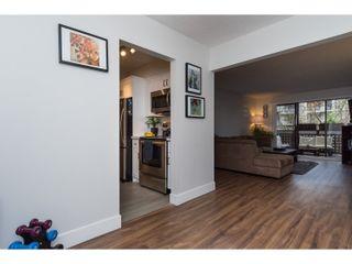 Photo 3: 206 545 SYDNEY Avenue in Coquitlam: Coquitlam West Condo for sale : MLS®# R2018606