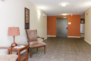 Photo 3: 104 2380 Brethour Ave in SIDNEY: Si Sidney North-East Condo for sale (Sidney)  : MLS®# 786586