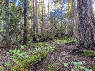 Photo 7: Lt 31 Wildwood Cres in : Isl Gabriola Island Land for sale (Islands)  : MLS®# 863197