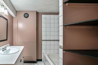 Photo 18: 75 Citadel Grove NW in Calgary: Citadel Detached for sale : MLS®# A1113592
