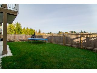 Photo 20: 27785 PORTER Drive in Abbotsford: House for sale : MLS®# F1426837
