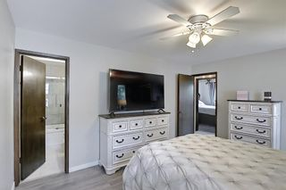 Photo 19: 335 Queensland Place SE in Calgary: Queensland Detached for sale : MLS®# A1137041