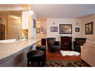 Photo 4: # 201 4990 MCGEER ST in Vancouver: Collingwood VE Condo for sale (Vancouver East)  : MLS®# V827027