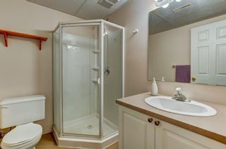 Photo 26: 55 Thornbird Way SE: Airdrie Detached for sale : MLS®# A1114077