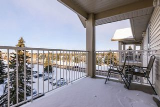 Photo 30: 509 7511 171 Street in Edmonton: Zone 20 Condo for sale : MLS®# E4229398
