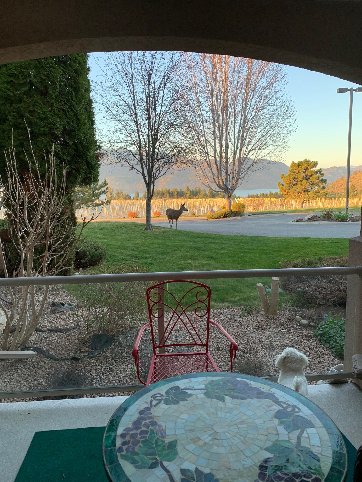 Main Photo: 114 3880 Brown Road in West Kelowna: Westbank Centre House for sale (Central Okanagan)  : MLS®# 10230702