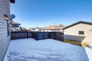 Photo 41: 253 Elgin Way SE in Calgary: McKenzie Towne Detached for sale : MLS®# A1087799