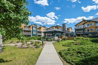 Photo 23: 320 25 Richard Place SW in Calgary: Lincoln Park Apartment for sale : MLS®# A1115963