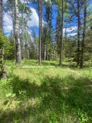 Photo 12: 5.78 Acres Parkins Road: Rural Foothills County Land for sale : MLS®# A1086953