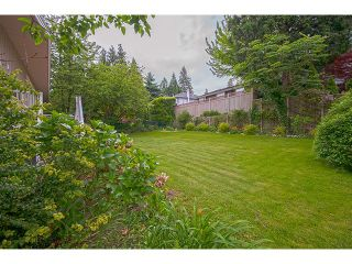 Photo 9: 407 ASHLEY ST in Coquitlam: Coquitlam West House for sale : MLS®# V1007665