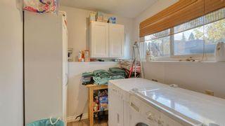 Photo 27: 347 Whiteside Road NE in Calgary: Whitehorn Detached for sale : MLS®# A1153718