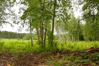 Photo 17: DL 1335A 37 Highway: Kitwanga Land for sale (Smithers And Area (Zone 54))  : MLS®# R2471833