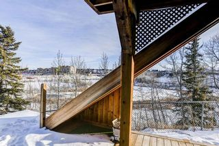 Photo 44: 36 ROYAL HIGHLAND Court NW in Calgary: Royal Oak Detached for sale : MLS®# A1029258