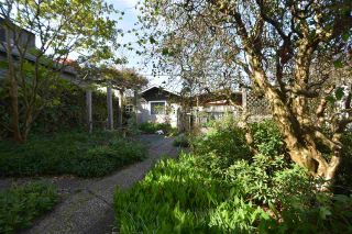 Photo 19: 315 E 17TH AVENUE in Vancouver: Main House for sale (Vancouver East)  : MLS®# R2286079