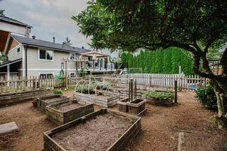"Photo 35: 21811 DONOVAN Avenue in Maple Ridge: West Central House for sale in ""WEST CENTRAL MAPLE RIDGE"" : MLS®# R2507281"