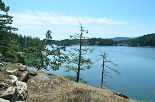 Photo 23: 1095 Nose Point Rd in : GI Salt Spring Land for sale (Gulf Islands)  : MLS®# 881923