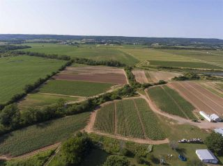Photo 16: 2969 Highway 1 in Aylesford East: 404-Kings County Farm for sale (Annapolis Valley)  : MLS®# 201919454