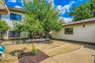 Photo 31: 335 Queensland Place SE in Calgary: Queensland Detached for sale : MLS®# C4303252