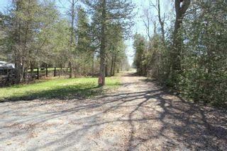 Photo 7: 1391 Portage Road in Kawartha Lakes: Rural Eldon House (Bungalow) for sale : MLS®# X4422672