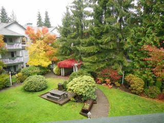 """Photo 17: 311 1150 LYNN VALLEY Road in North Vancouver: Lynn Valley Condo for sale in """"The Laurels"""" : MLS®# R2216205"""